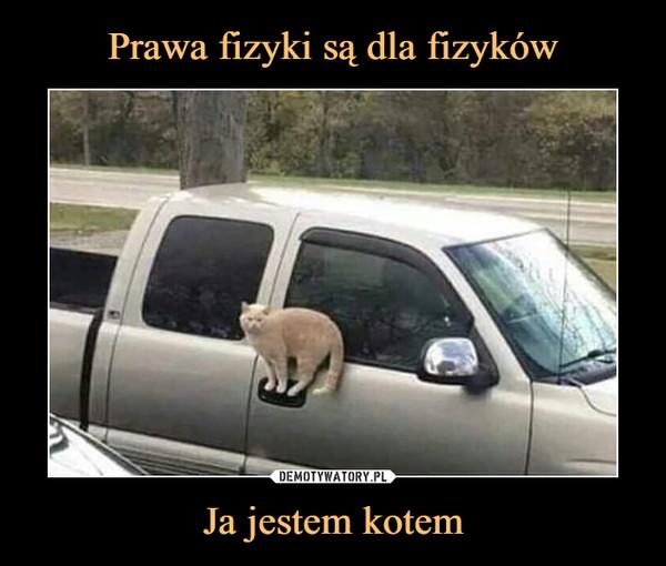 Ja jestem kotem –