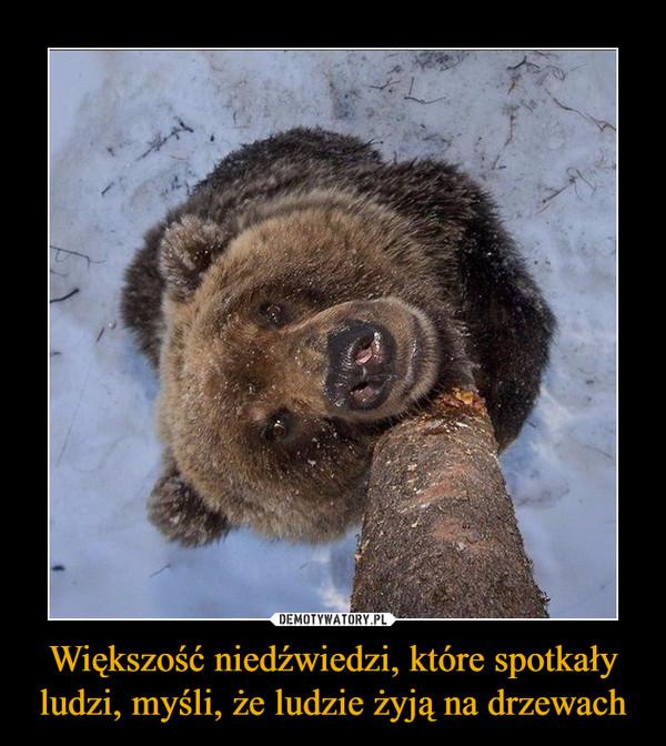 Większość niedźwiedzi, które spotkały ludzi, myśli, że ludzie żyją na drzewach –