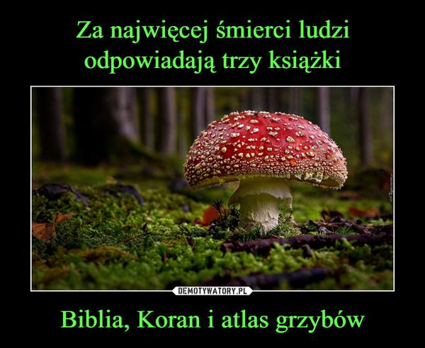 Biblia, Koran i atlas grzybów –