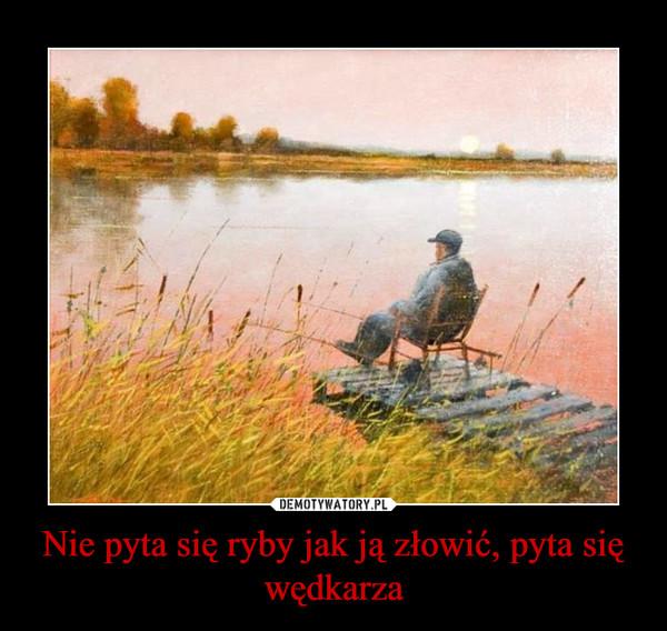 Nie pyta się ryby jak ją złowić, pyta się wędkarza –