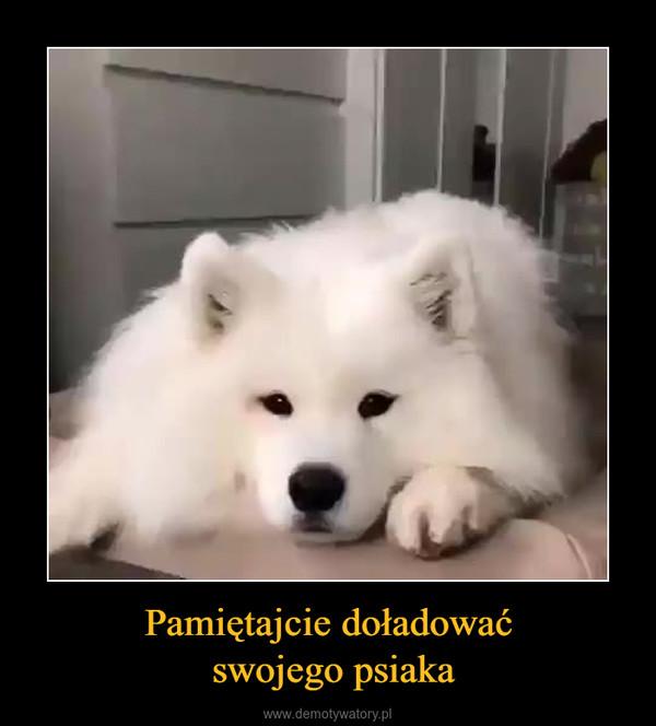 Pamiętajcie doładować swojego psiaka –