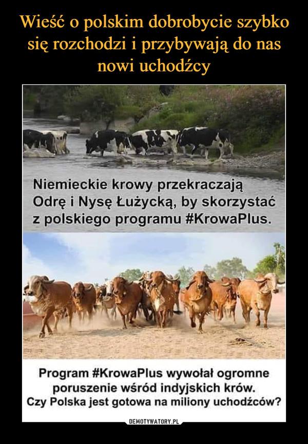 –  Niemieckie krowy pzekraczajaNiemOdrę i Nysę Łużycką, by skorzystaćz polskiego programu #KrowaPlus.Program #KrowaPlus wywołał ogromneporuszenie wśród indyjskich krów.Czy Polska jest gotowa na miliony uchodźców?