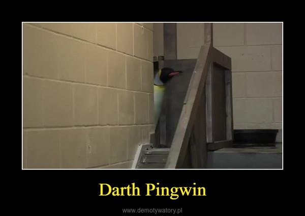 Darth Pingwin –