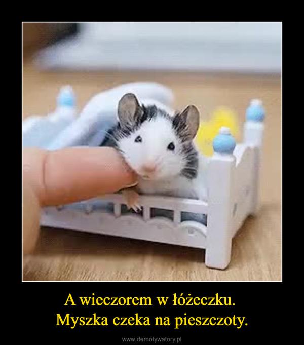 A wieczorem w łóżeczku. Myszka czeka na pieszczoty. –
