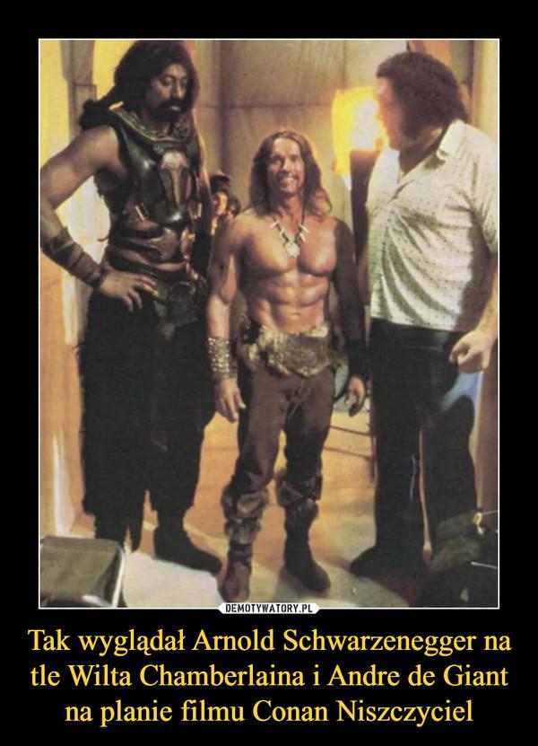 Tak wyglądał Arnold Schwarzenegger na tle Wilta Chamberlaina i Andre de Giant na planie filmu Conan Niszczyciel –