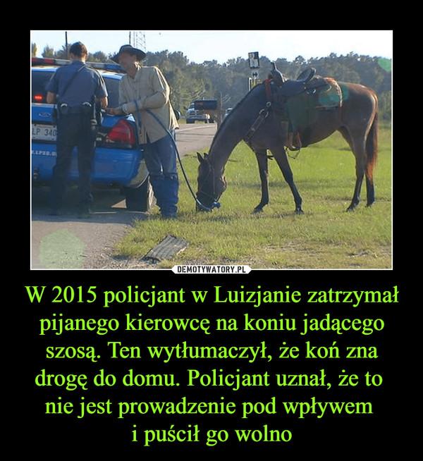 W 2015 policjant w Luizjanie zatrzymał pijanego kierowcę na koniu jadącego szosą. Ten wytłumaczył, że koń zna drogę do domu. Policjant uznał, że to nie jest prowadzenie pod wpływem i puścił go wolno –