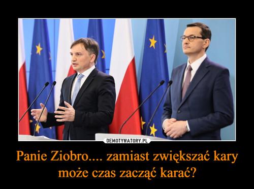 Panie Ziobro.... zamiast zwiększać kary może czas zacząć karać?