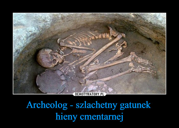 Archeolog - szlachetny gatunek  hieny cmentarnej