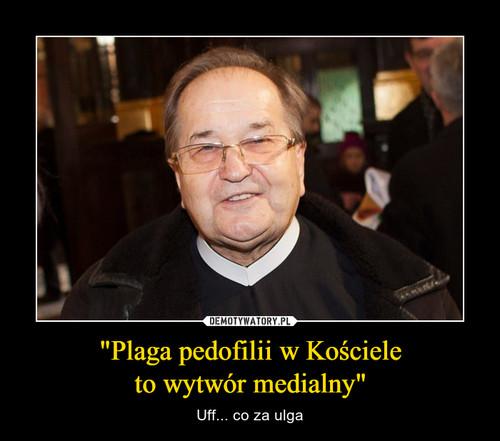"""""""Plaga pedofilii w Kościele to wytwór medialny"""""""