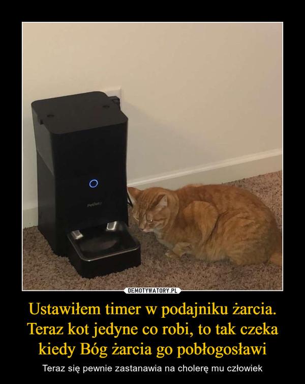 Ustawiłem timer w podajniku żarcia. Teraz kot jedyne co robi, to tak czeka kiedy Bóg żarcia go pobłogosławi – Teraz się pewnie zastanawia na cholerę mu człowiek