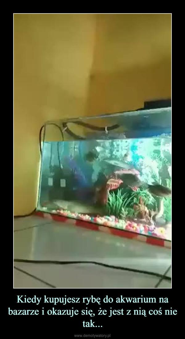 Kiedy kupujesz rybę do akwarium na bazarze i okazuje się, że jest z nią coś nie tak... –