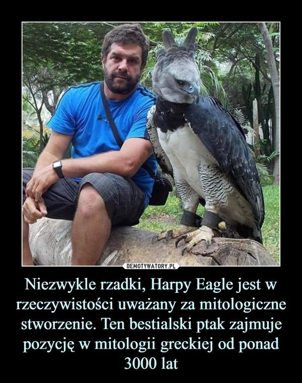 Niezwykle rzadki, Harpy Eagle jest w rzeczywistości uważany za mitologiczne stworzenie. Ten bestialski ptak zajmuje pozycję w mitologii greckiej od ponad 3000 lat –