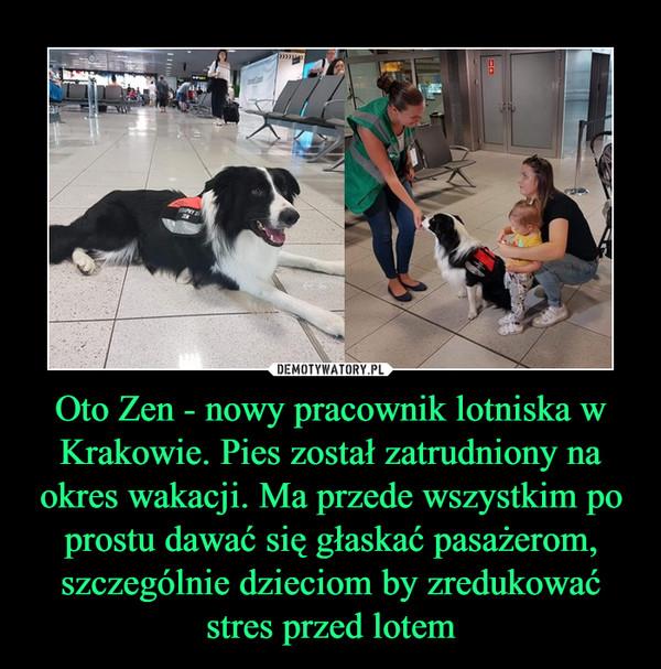 Oto Zen - nowy pracownik lotniska w Krakowie. Pies został zatrudniony na okres wakacji. Ma przede wszystkim po prostu dawać się głaskać pasażerom, szczególnie dzieciom by zredukować stres przed lotem –