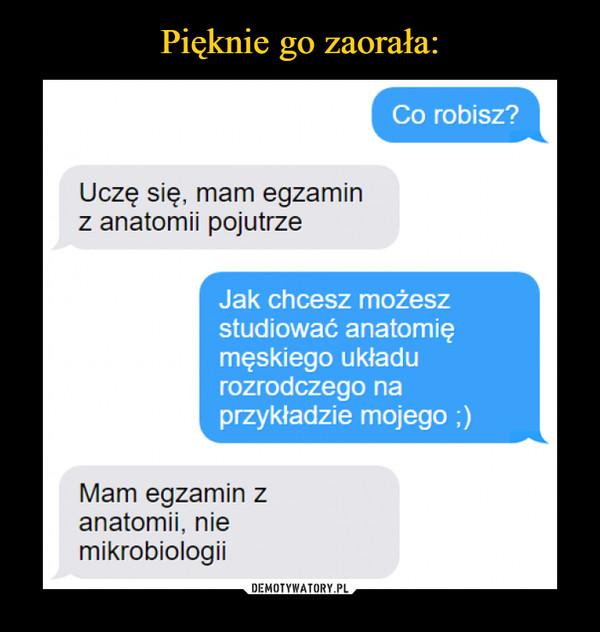 –  Uczę się, mam egzamin z anatomii pojutrze pomożesz anatomię tego układu czego na ładzie mojego ;) Mam egzamin z anatomii, nie mikrobiologii
