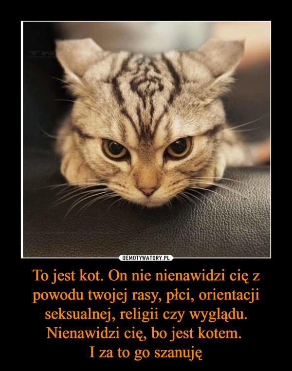 To jest kot. On nie nienawidzi cię z powodu twojej rasy, płci, orientacji seksualnej, religii czy wyglądu. Nienawidzi cię, bo jest kotem. I za to go szanuję –