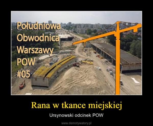 Rana w tkance miejskiej – Ursynowski odcinek POW