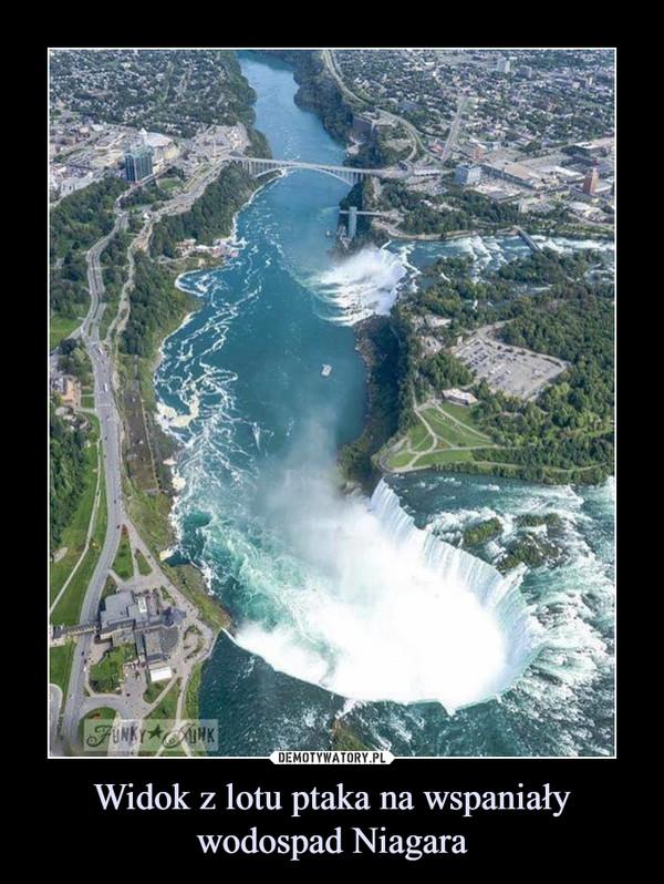 Widok z lotu ptaka na wspaniały wodospad Niagara –