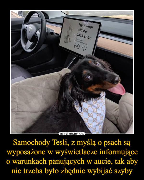 Samochody Tesli, z myślą o psach są wyposażone w wyświetlacze informujące o warunkach panujących w aucie, tak aby nie trzeba było zbędnie wybijać szyby –