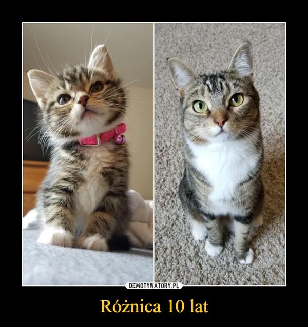 Różnica 10 lat –