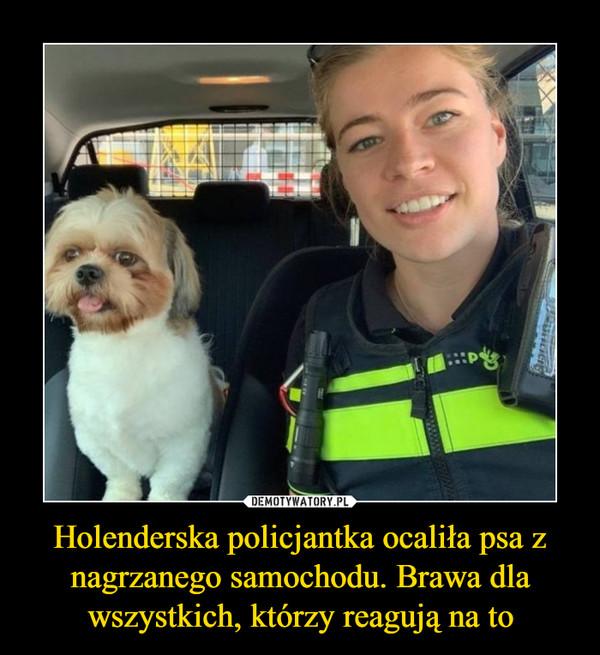 Holenderska policjantka ocaliła psa z nagrzanego samochodu. Brawa dla wszystkich, którzy reagują na to –