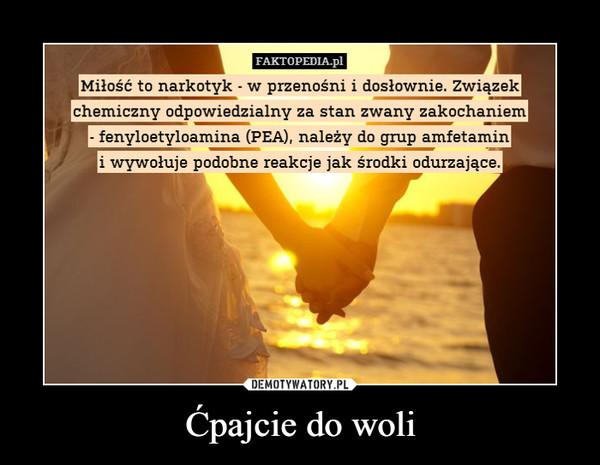 Ćpajcie do woli –  FAKTOPEDIA.pl Miłość to narkotyk - w przenośni i dosłownie. Związek chemiczny odpowiedzialny za stan zwany zakochaniem - fenyloetyloamina (PEA), należy do grup amfetamin i wywołuje podobne reakcje jak środki odurzające.