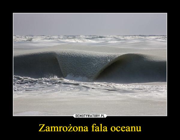 Zamrożona fala oceanu –
