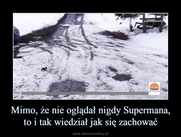 Mimo, że nie oglądał nigdy Supermana, to i tak wiedział jak się zachować –