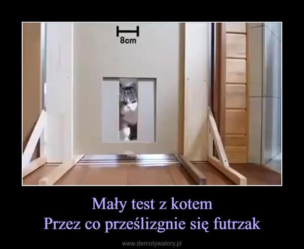 Mały test z kotemPrzez co prześlizgnie się futrzak –