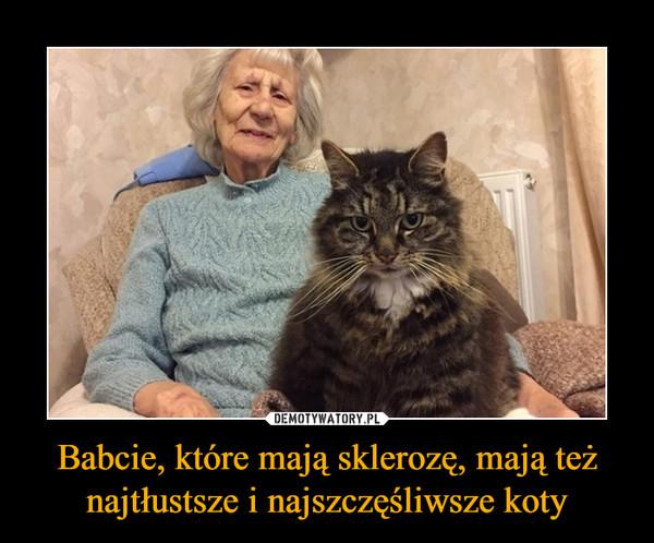 Babcie, które mają sklerozę, mają też najtłustsze i najszczęśliwsze koty –