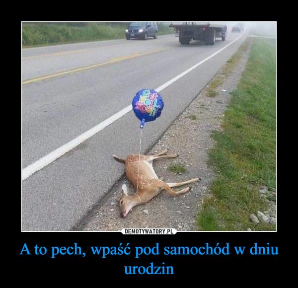 A to pech, wpaść pod samochód w dniu urodzin –