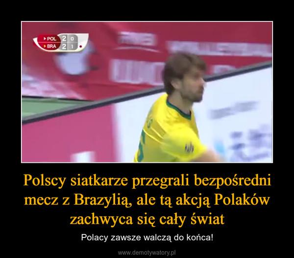 Polscy siatkarze przegrali bezpośredni mecz z Brazylią, ale tą akcją Polaków zachwyca się cały świat – Polacy zawsze walczą do końca!