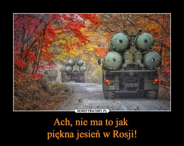 Ach, nie ma to jak piękna jesień w Rosji! –