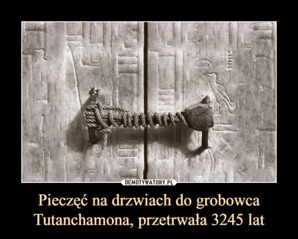 Pieczęć na drzwiach do grobowca Tutanchamona, przetrwała 3245 lat –