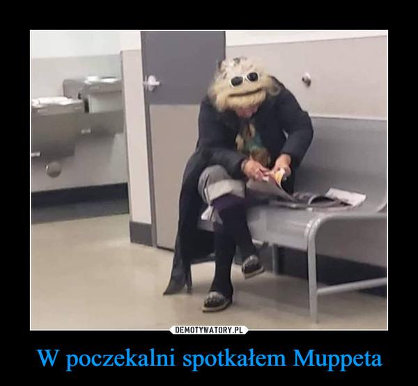 W poczekalni spotkałem Muppeta –
