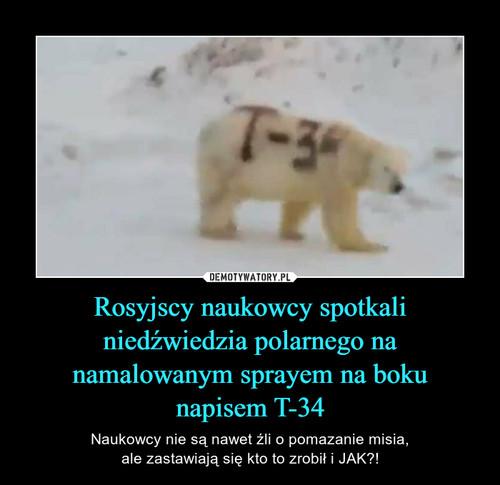 Rosyjscy naukowcy spotkali niedźwiedzia polarnego na namalowanym sprayem na boku napisem T-34