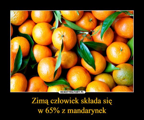 Zimą człowiek składa sięw 65% z mandarynek –