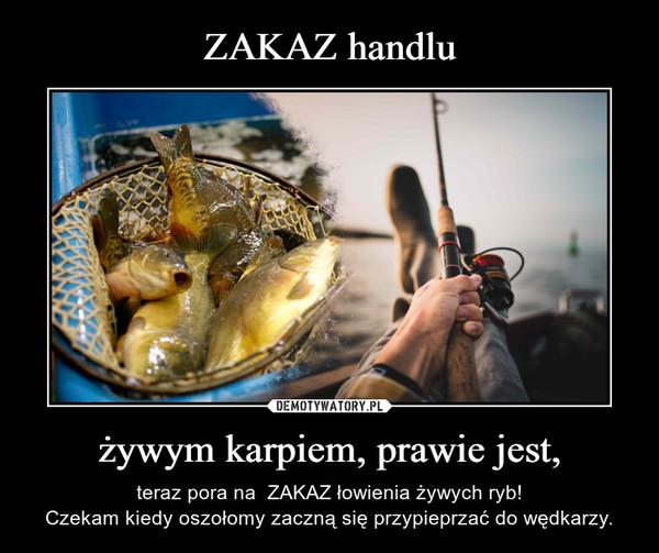 żywym karpiem, prawie jest, – teraz pora na  ZAKAZ łowienia żywych ryb!Czekam kiedy oszołomy zaczną się przypieprzać do wędkarzy.