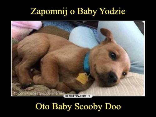 Zapomnij o Baby Yodzie Oto Baby Scooby Doo