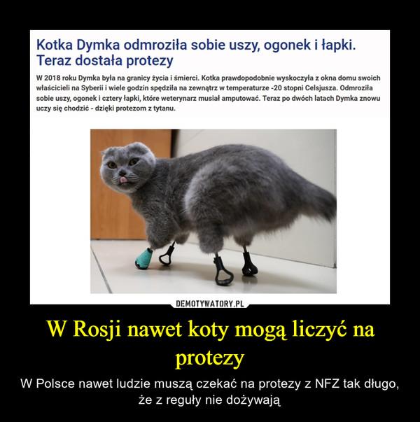 W Rosji nawet koty mogą liczyć na protezy – W Polsce nawet ludzie muszą czekać na protezy z NFZ tak długo, że z reguły nie dożywają Kotka Dymka odmroziła sobie uszy, ogonek i łapki. Teraz dostała protezy W 2018 roku Dymka była na granicy życia i śmierci. Kotka prawdopodobnie wyskoczyła z okna domu swoich właścicieli na Syberii i wiele godzin spędziła na zewnątrz w temperaturze -20 stopni Celsjusza. Odmroziła sobie uszy, ogonek i cztery łapki, które weterynarz musiał amputować. Teraz po dwóch latach Dymka znowu uczy się chodzić - dzięki protezom z tytanu.