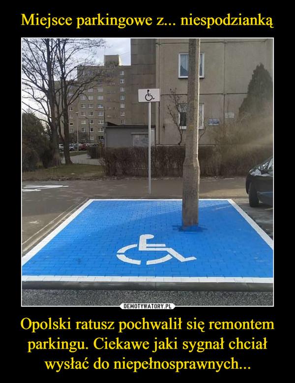 Opolski ratusz pochwalił się remontem parkingu. Ciekawe jaki sygnał chciał wysłać do niepełnosprawnych... –