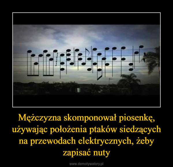 Mężczyzna skomponował piosenkę, używając położenia ptaków siedzących na przewodach elektrycznych, żeby zapisać nuty –