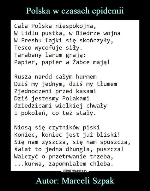 Polska w czasach epidemii Autor: Marceli Szpak