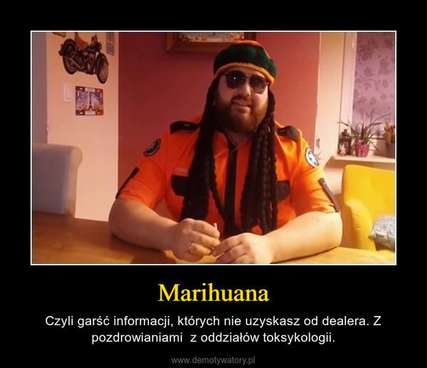 Marihuana – Czyli garść informacji, których nie uzyskasz od dealera. Z pozdrowianiami  z oddziałów toksykologii.