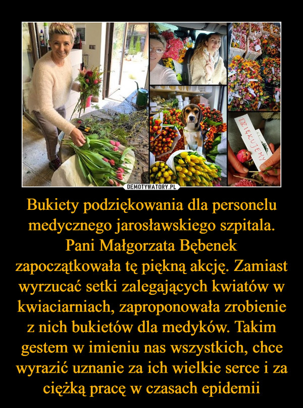 Bukiety podziękowania dla personelu medycznego jarosławskiego szpitala. Pani Małgorzata Bębenek zapoczątkowała tę piękną akcję. Zamiast wyrzucać setki zalegających kwiatów w kwiaciarniach, zaproponowała zrobienie z nich bukietów dla medyków. Takim gestem w imieniu nas wszystkich, chce wyrazić uznanie za ich wielkie serce i za ciężką pracę w czasach epidemii –