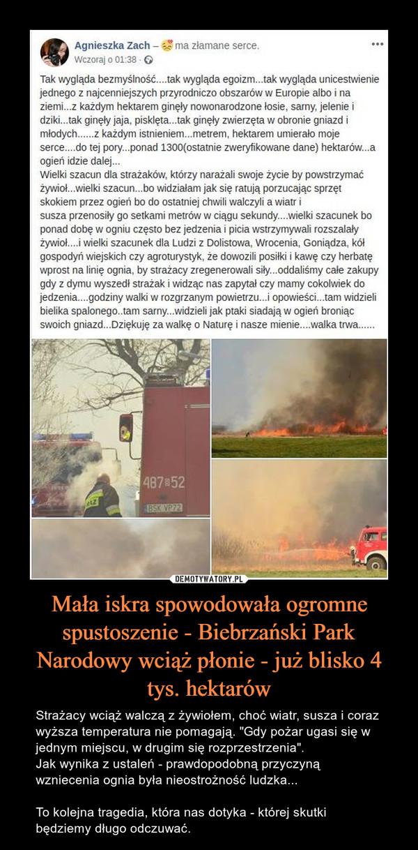 """Mała iskra spowodowała ogromne spustoszenie - Biebrzański Park Narodowy wciąż płonie - już blisko 4 tys. hektarów – Strażacy wciąż walczą z żywiołem, choć wiatr, susza i coraz wyższa temperatura nie pomagają. """"Gdy pożar ugasi się w jednym miejscu, w drugim się rozprzestrzenia"""". Jak wynika z ustaleń - prawdopodobną przyczyną wzniecenia ognia była nieostrożność ludzka... To kolejna tragedia, która nas dotyka - której skutki będziemy długo odczuwać. Tak wygląda bezmyślność....tak wygląda egoizm...tak wygląda unicestwienie jednego z najcenniejszych przyrodniczo obszarów w Europie albo i na ziemi...z każdym hektarem ginęły nowonarodzone łosie, sarny, jelenie i dziki...tak ginęły jaja, pisklęta...tak ginęły zwierzęta w obronie gniazd i młodych......z każdym istnieniem...metrem, hektarem umierało moje serce....do tej pory...ponad 1300(ostatnie zweryfikowane dane) hektarów...a ogień idzie dalej...Wielki szacun dla strażaków, którzy narażali swoje życie by powstrzymać żywioł...wielki szacun...bo widziałam jak się ratują porzucając sprzęt skokiem przez ogień bo do ostatniej chwili walczyli a wiatr isusza przenosiły go setkami metrów w ciągu sekundy....wielki szacunek bo ponad dobę w ogniu często bez jedzenia i picia wstrzymywali rozszalały żywioł....i wielki szacunek dla Ludzi z Dolistowa, Wrocenia, Goniądza, kół gospodyń wiejskich czy agroturystyk, że dowozili posiłki i kawę czy herbatę wprost na linię ognia, by strażacy zregenerowali siły...oddaliśmy całe zakupy gdy z dymu wyszedł strażak i widząc nas zapytał czy mamy cokolwiek do jedzenia....godziny walki w rozgrzanym powietrzu...i opowieści...tam widzieli bielika spalonego..tam sarny...widzieli jak ptaki siadają w ogień broniąc swoich gniazd...Dziękuję za walkę o Naturę i nasze mienie....walka trwa......"""