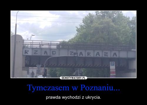 Tymczasem w Poznaniu...