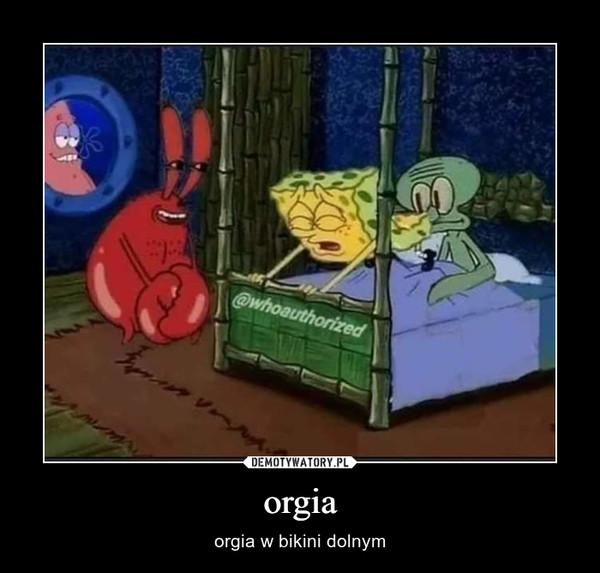 orgia – orgia w bikini dolnym