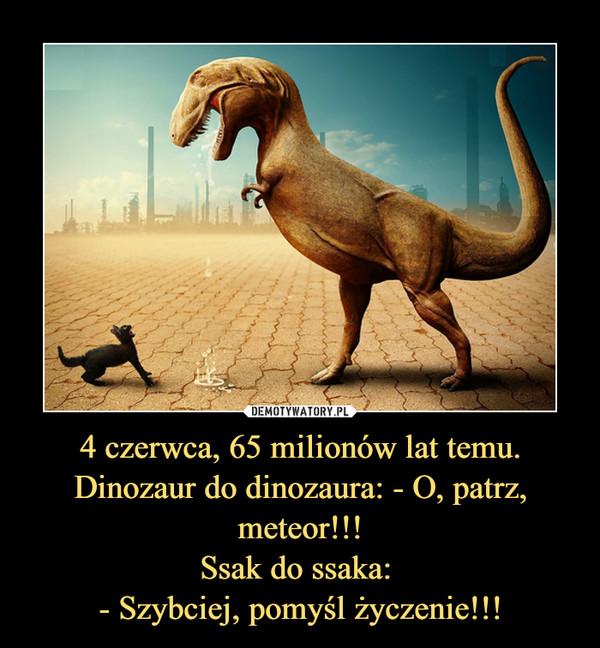 4 czerwca, 65 milionów lat temu.Dinozaur do dinozaura: - O, patrz, meteor!!!Ssak do ssaka: - Szybciej, pomyśl życzenie!!! –