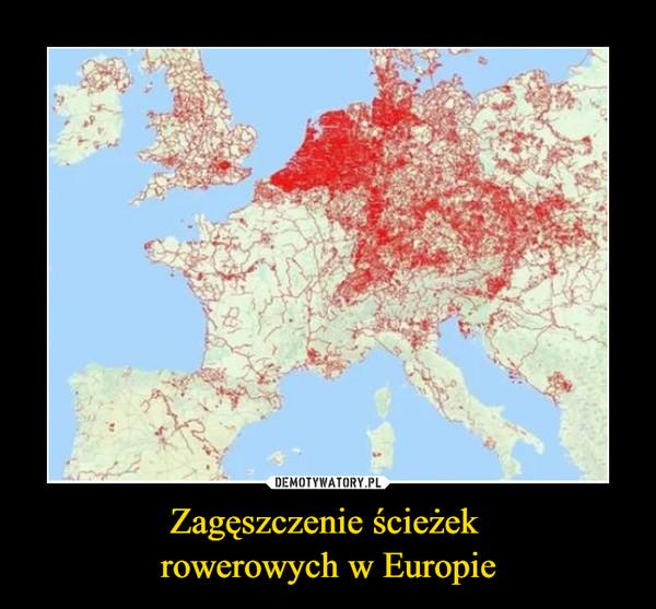 Zagęszczenie ścieżek rowerowych w Europie –