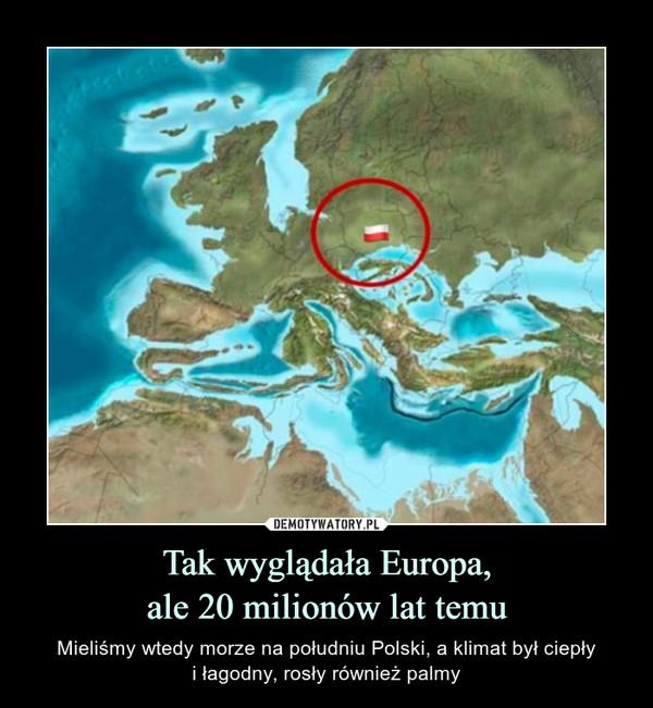 Tak wyglądała Europa,ale 20 milionów lat temu – Mieliśmy wtedy morze na południu Polski, a klimat był ciepłyi łagodny, rosły również palmy